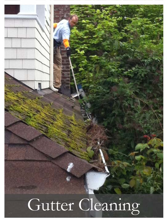 Gutter Cleaning Service Portland Lake Oswego Oregon
